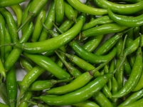 Big Green Chilli ( Fafda Marcha )