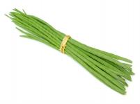 Drum Stick(SARGAVA)