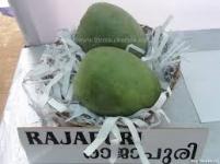 Kachi Rajapuri Keri